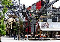 les Machines de l 'île, éléphant, branche de l'arbre, café